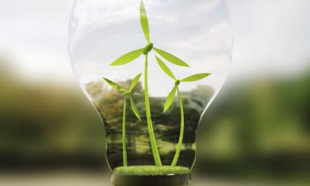 8 Linee Guida per una ripartenza dell'economia nel segno della sostenibilità
