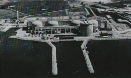 I reattori CANDU ad uranio naturale e ad acqua pesante
