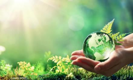 Più dati, più sostenibilità